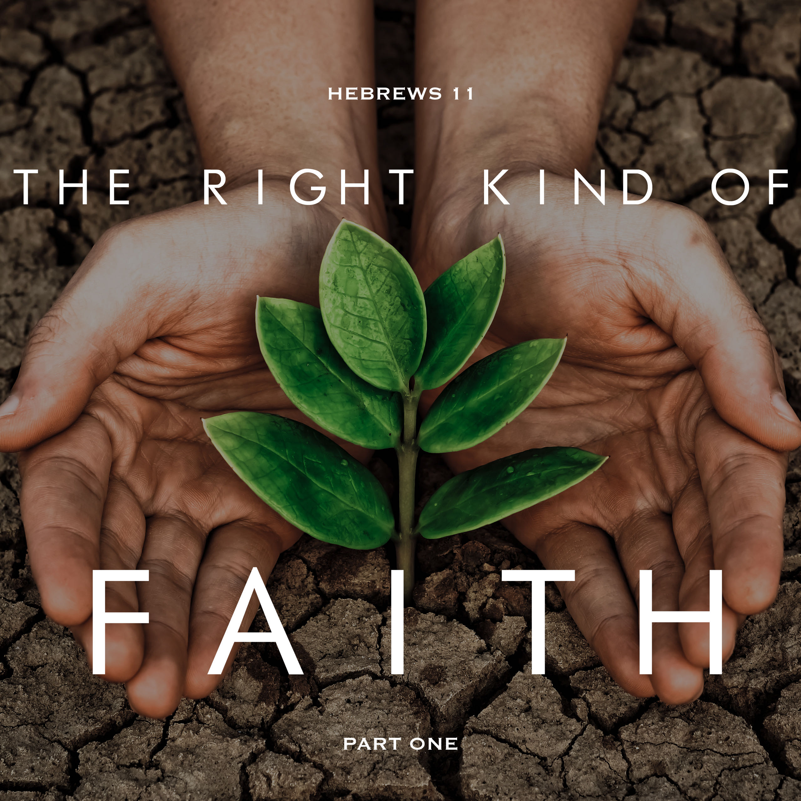 The Right Kind of Faith Part 1