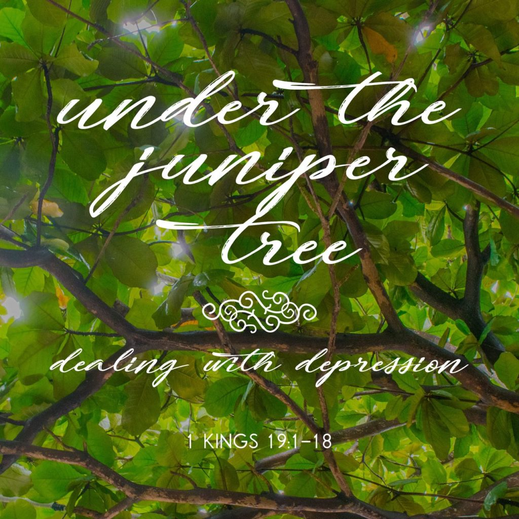 under the juniper tree sermon
