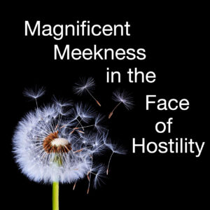 Magnificent Meekness in the Face of Hostility copy