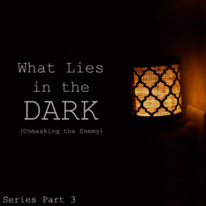 What Lies in the Dark copy